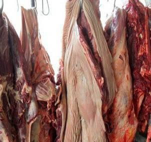 河北驴肉加工厂家告诉您怎么辨别驴肉