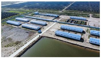 拴嘴驴拥有自己的养殖厂及驴肉加工中心